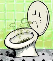 از بین بردن بوی بد توالت فرنگی